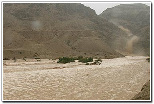 "Sudden Flooding Creates a Thunderous ""Rivers in the Desert"" Experience"